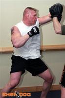 Brock, focus training
