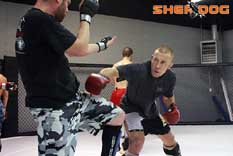 Georges St-Pierre in training