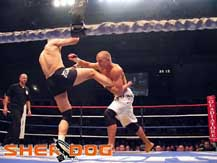 Georges St-Pierre in combat