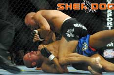 Georges St-Pierre 2